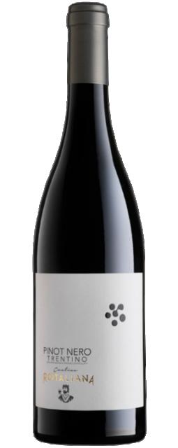 Pinot Nero Trentino DOC 2016 Cantina Rotaliana